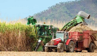 Agri-traders feel the pain as plentiful harvests persist