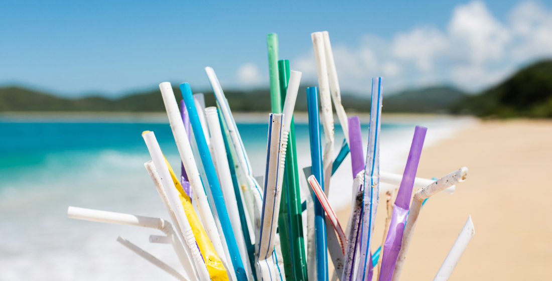 Drawing better straws? Pricing sustainability into supply chains