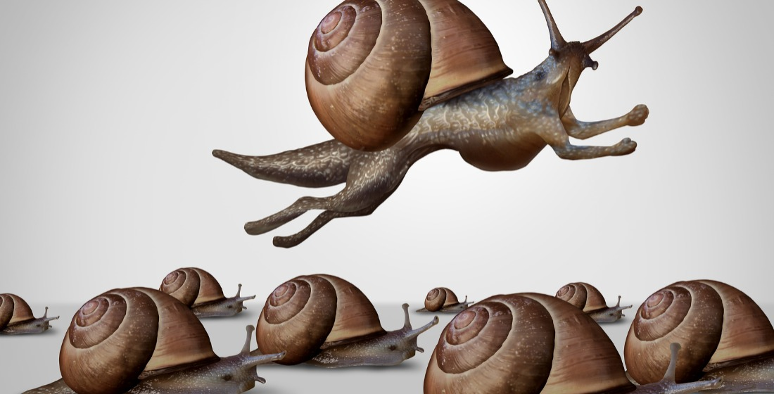 Blended finance: Coming out of its shell