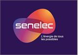Societe d'Electricite du Senegal (Senelec)