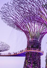 TXF Training: Supply Chain Finance | Singapore