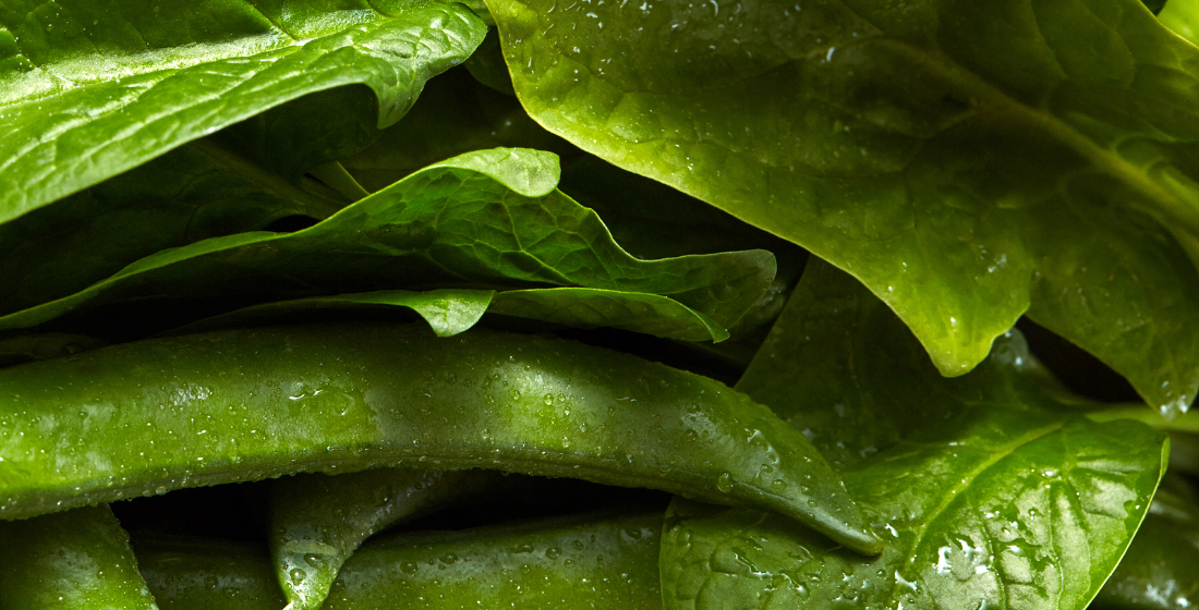 Eat your greens: Will incentive issues stymie ESG ambitions for ECAs?