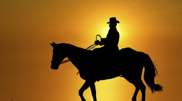 Beyond the wild west in factoring