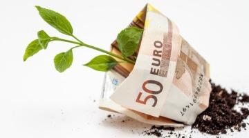 Nourishing green shoots in Greek trade