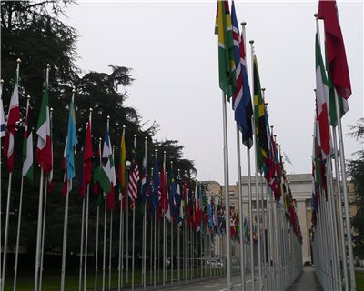 WTO forecasts modest growth in global trade for 2014