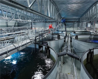 GIEK and Export Credit Norway fund fish farm export