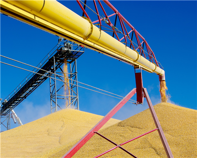 EBRD arranges $130 million loan for Ukraine grain producer Nibulon