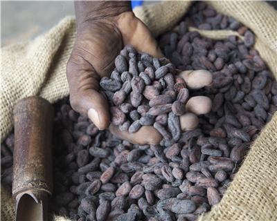 Ghana's Cocobod sets the standard