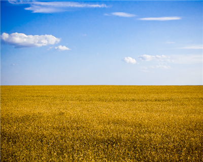 EBRD provides financing for Ukrainian agri-sector