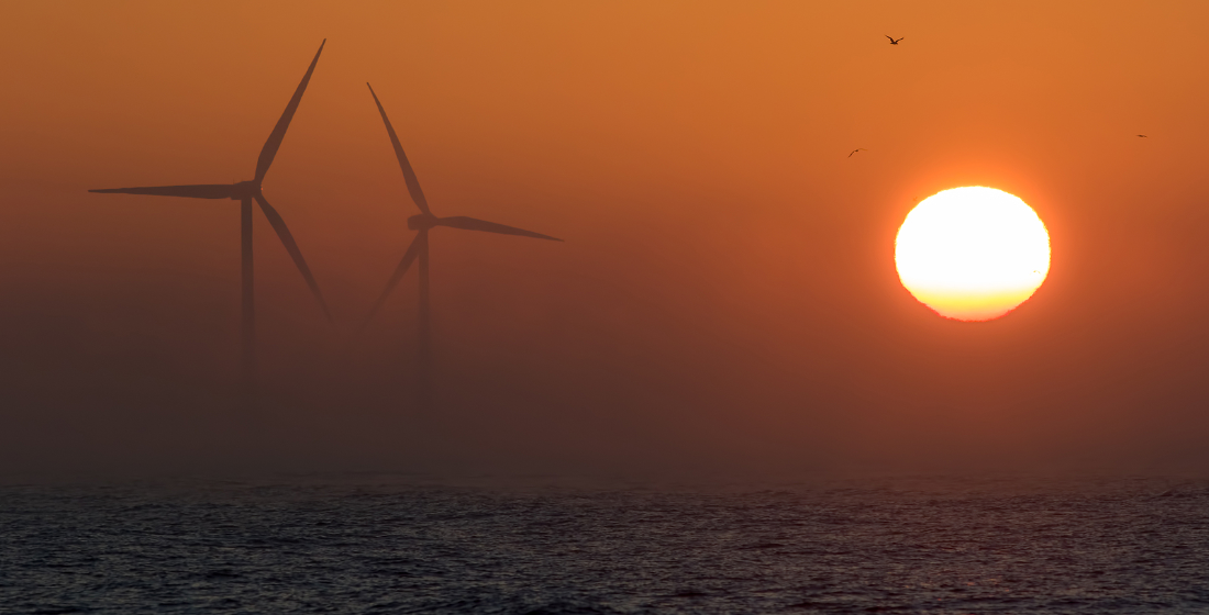 2021: A new dawn for the climate economy