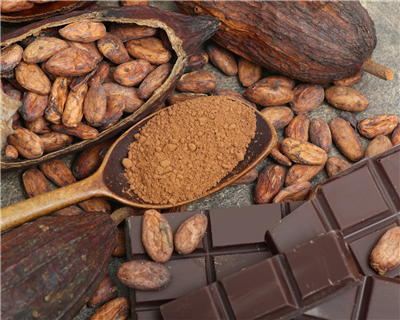 BEST SOFT COMMODITY FINANCE DEAL OF THE YEAR: Cocoa Touton $80m prepayment provides new dimension