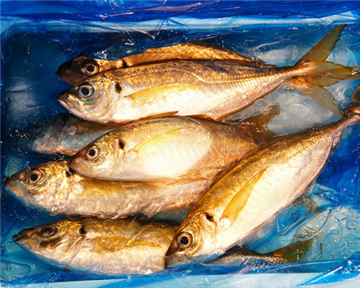 A fishy business: global trade's unreported $2 trillion