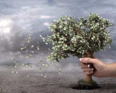 Aela Energia: Shaking the DFI money tree