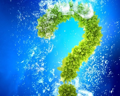 Do green bonds equal clean?