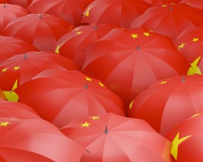 Sinosure: Spreading the umbrella