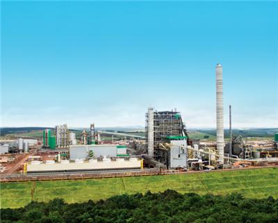 IADB disburses $200m tranche for Brazilian pulp plant