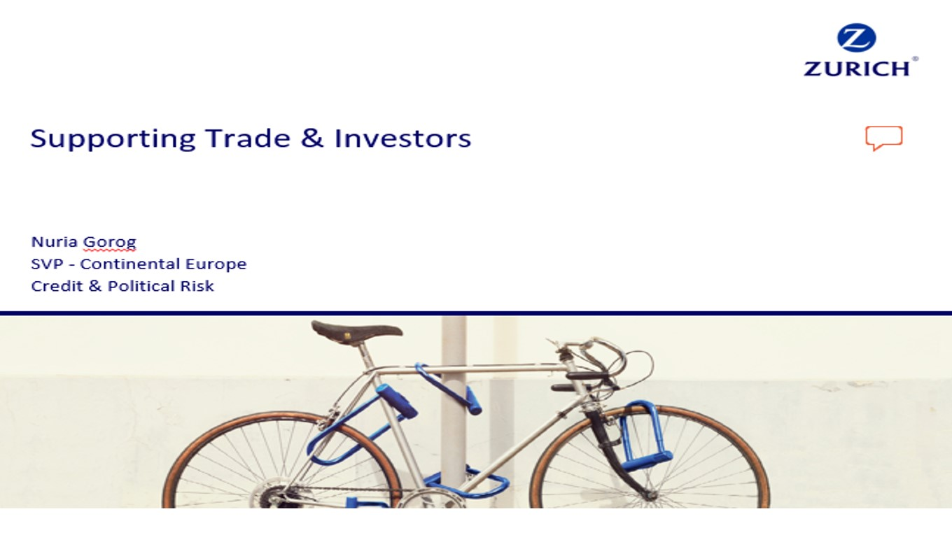 Bring Variety to Export Finance: Supporting Trade & Investors